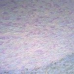 Untitled, 2009, (detail) oil on canvas, 900 x 1200mm (purple)